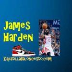 Zapatillas baloncesto James Harden